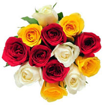 12 Mix Color Roses: Anniversary Flowers to Canada