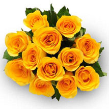 12 Yellow Roses: I am Sorry Flowers to Canada