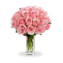 24 Pink Roses: I am Sorry Flowers to Canada