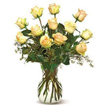 A Dozen Cream Roses-CND: Send Flowers to Winnipeg