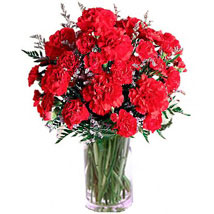 Carnation Delight: Gifts to Canada for Husband