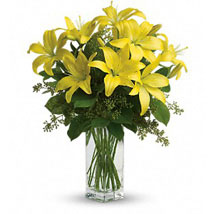 Charming Yellow: Gifts to Canada for Mother