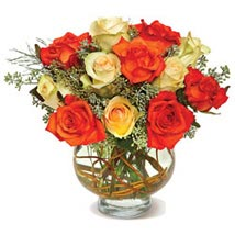 Harvest Moon Roses CND: Send Flowers to Winnipeg
