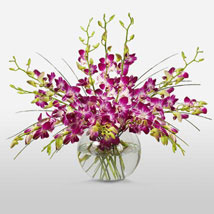 Purple Orchids in Vase: Anniversary Flowers to Canada