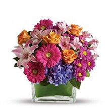 wondrous assortmen: Send Flowers to Edmonton