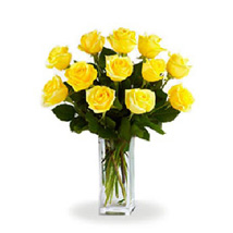 Yellow Roses: Gifts to Canada for Husband