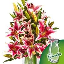 10 pink Stargazer Lilies in a bunch: Flowers to Munich