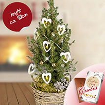 XMas Tree Herzpochen with XMas lights and Merci: Christmas Gift Delivery Germany