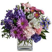 Lavender Ice jor: Gifts to Jordan