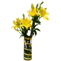 6 Lilies For Friendship KU: Send Gifts to Kuwait