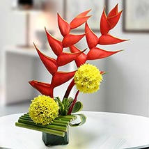 Exotic Flower Arrangement: Premium & Exclusive Gift Collection