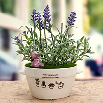 Exquisite Plant: Artificial Flowers