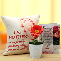 My Sunshine Mother: Artificial Flowers