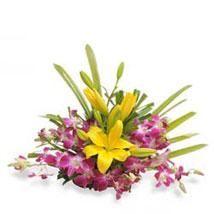 Timeless Elegance: Send Flowers to Mumbai