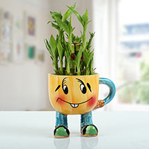 Two Layer Bamboo Plant With Smiley Vase: Anniversary Gifts