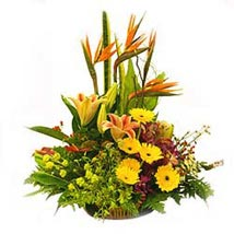 Basket of Mixed seasonal flowers: Send Flowers to Malaysia