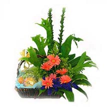 Fruit n Flowers Basket with Pink Gerberas MAL: Flower Delivery in Malaysia
