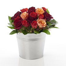 A Rosy Bucket: Flowers to Hamilton