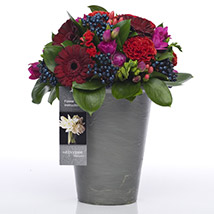 Bold N Beautiful Flowers: Send Flower Bouquets to New Zealand