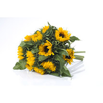 Bright Sunflower Bouquet: Send Birthday Gifts to New Zealand