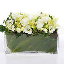 Classic Petals In Glass Vase: Flowers to Hamilton