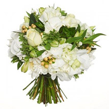 Fresh White Posy: Send Gifts to Hamilton