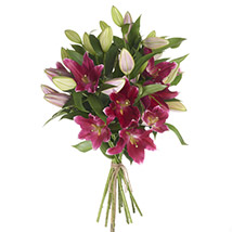 Gleaming Pink Lilies: Send Anniversary Gifts To New Zealand