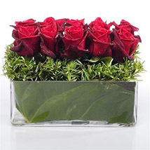 Heaven of Red Roses: Send Birthday Gifts to New Zealand