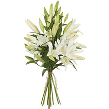 Pristine White Lilies: Send Flower Bouquets to New Zealand