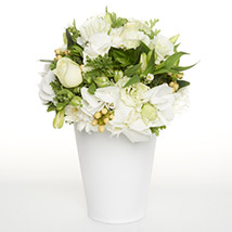 White Delightful Posy: Send Flower Bouquets to New Zealand
