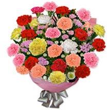 Carnation Carnivalpak pak: Send Flowers to Pakistan
