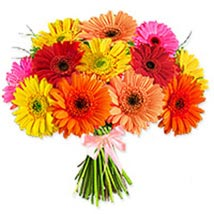 Crazy Daisypak pak: Send Flowers to Pakistan