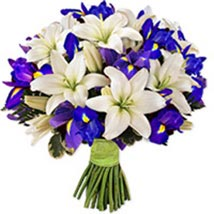 Wild At Heartpak pak: Flower Delivery in Pakistan