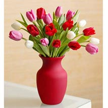 Assorted Tulips: Flowers to Davao City