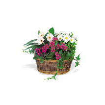 Send a Smile Flower Basket: Send Mothers Day Flowers to Qatar