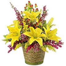 Sunshine Delight qat: Gift Delivery in Doha