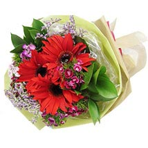Red Gerbera Bouquet: Womens Day Gifts to Singapore