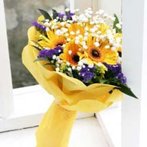 Sunshine: House Warming Flowers to Singapore