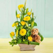 Baby Flower Arrangement: Gift Delivery in South Africa