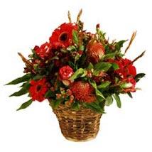 Crimson Moments SA: Christmas Gifts to South Africa