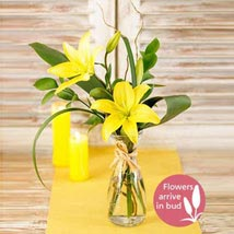 Milk Jug of Lilies: Christmas Gifts to South Africa