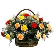 Rainbow Carnation Basket SA: South Africa