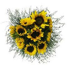 Sunflower Smiles SA: Send Gifts to South Africa