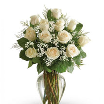 12 White Roses Arrangement: Same Day Condolence Flowers in UAE