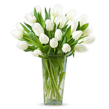 20 White Tulips: Send Sympathy & Funeral Flowers to UAE