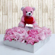 Entrenched With Beauty: Soft Toys to UAE