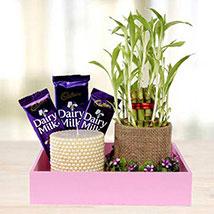 Romantic Date: Plants to UAE