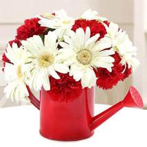 Showering Joy: Carnations to UAE