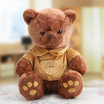 Ted Ted Teddy: Soft Toys to UAE