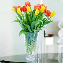 Vibrant Tulip Bouquet: Send Ramadan Gifts to Abu Dhabi